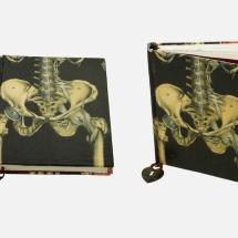 Skeleton Bones Book | Handmade Books