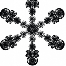 Letterform Snowflake F